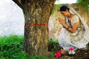 Worship Tree