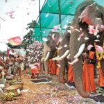 Pray To The Elephant And Get Blessings Of Supreme Strength
