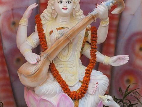 Want Career Success? Worship Goddess Of Knowledge Saraswati