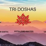 Balance Your Tridosha To Live A Disease-free Wholesome Life