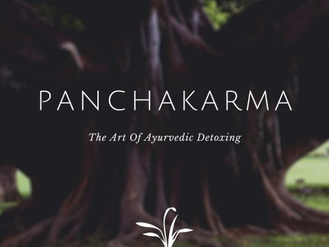 Experience Panchakarma Ayurvedic Treatment: The Ancient Body Detoxifying Therapy