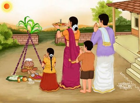 Pongal- The Thanksgiving Harvesting Festival Of Tamil Nadu