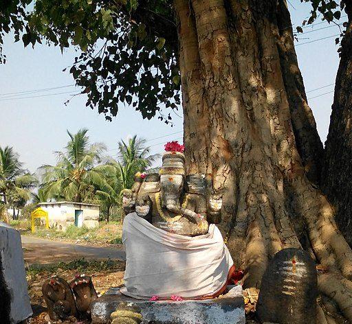 Reason Behind Worshipping Lord Ganesha Under The Peepal Tree